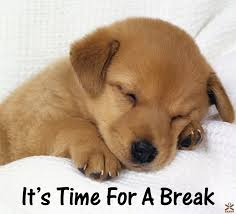 time for a break